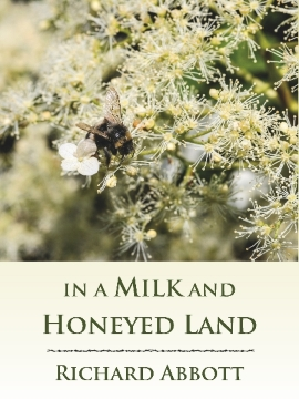 In a Milk and Honeyed Land new cover